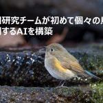 研究チームが初めて個々の鳥を識別するAIを構築、ほか【AI最新ニュース】