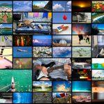 FAIRから発表された画像処理分野用の自己教師あり学習モデルSEERを紹介!